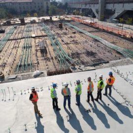 Broedpreventie voorkomt dat de bouw stil wordt gelegd
